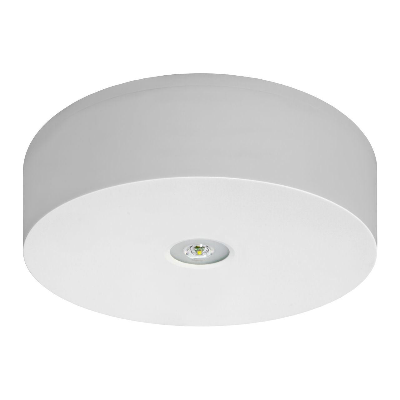 Потолочный аварийный светильник IP65/IP42 для открытых пространств AXN/O Awex