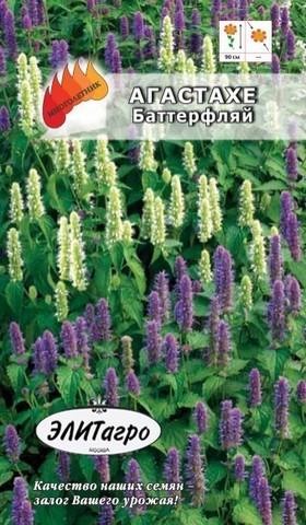 Семена Агастахе Баттерфляй, Мнг