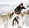 Лыжные Брюки самосбросы Stoneham Soft shell (ST00000525) унисекс