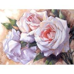 DIMENSIONS Белые розы (White Roses)