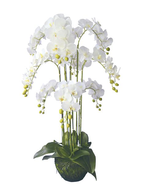 Статуэтки Искусственный цветок Now's Home Орхидея iskusstvennyy-tsvetok-nows-home-orhideya-frantsiya.jpg