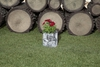 Вертикальная цветочница  Surreal Береза  S/M (24х22 см) (Nature Innovation)
