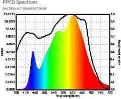 LED светильник Citizen 200w COB Full Spectrum