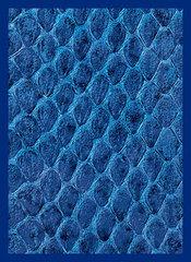 Legion Supplies - Dragon Hide Blue Протекторы 50 штук
