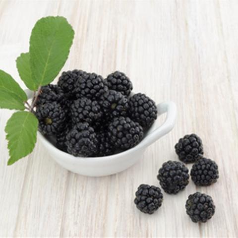 Ароматизатор TPA Boysenberry Flavor - Бойзенова ягода