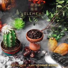 Табак Element 100г - Cactus Fig (Земля)