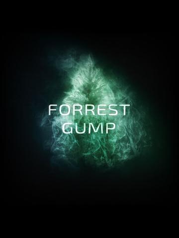 Кальянная смесь DO YOU - Forrest gump (Хвойный лес), 50г.