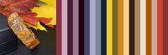 с чем носить лечебный янтарь бурого цвета - цветовая шпаргалка для подбора одежды