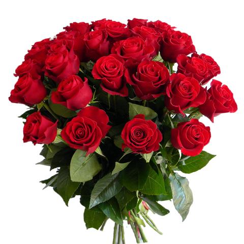 Букет из 25 голландских роз (70 см)