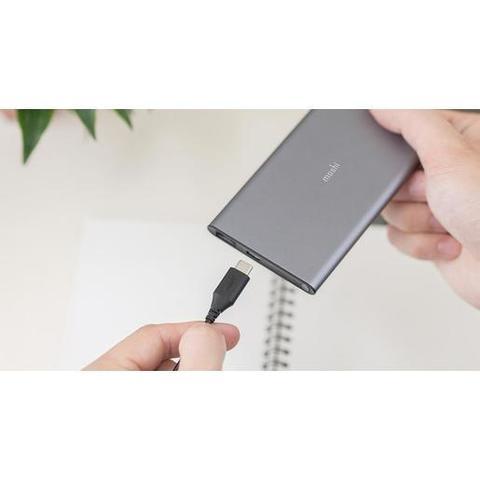 Портативный аккумулятор Moshi IonSlim 5K. Емкость 5150 мАч. 2 разъема (USB-A и USB-C). Цвет серый