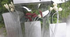 Основа цветочной головки