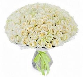 Цветы 101 белая роза 101_белая_роза.jpg