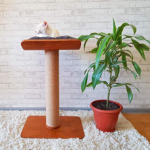 Лежанка для кошек легко вмещает даже крупного кота