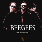 Bee Gees / One Night Only (HDCD)