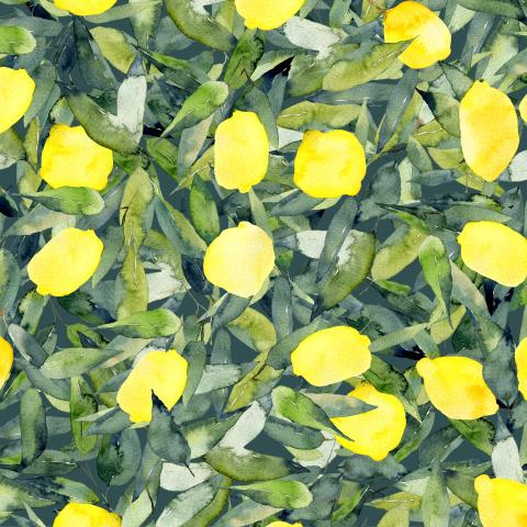 Лимоны на густой листве