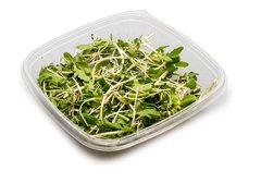Салатный микс микрозелень № 4, 80г