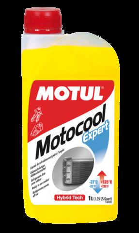 MOTUL Motocool Expert -37