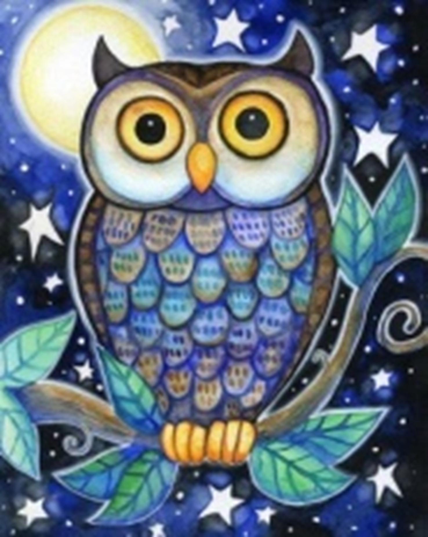 Картина раскраска по номерам 30x40 Сова в ночи (арт ...