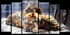 "Модульная картина ""Два тигра"""