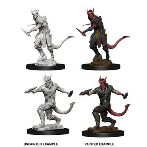 D&D Nolzur's Marvelous Miniatures - Tiefling Male Rogue