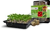 Мини - теплица, проращиватель семян