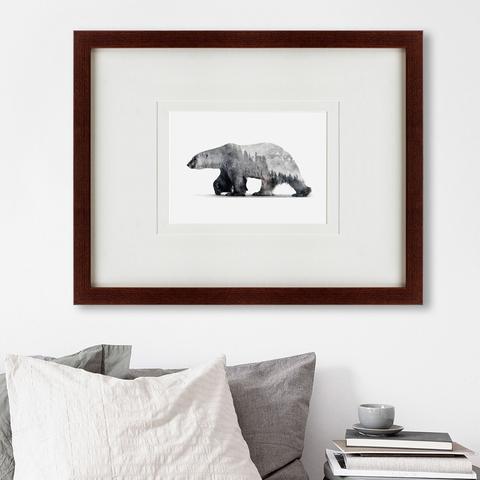 - The Bear