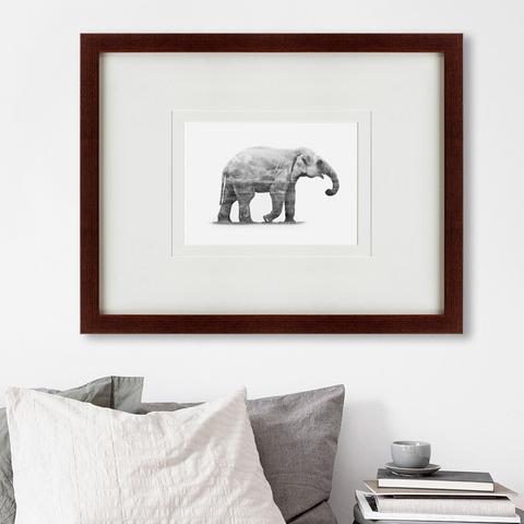 - The Elephant