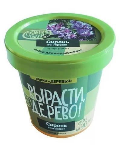 Набор для выращивания растений - Сирень венгерская