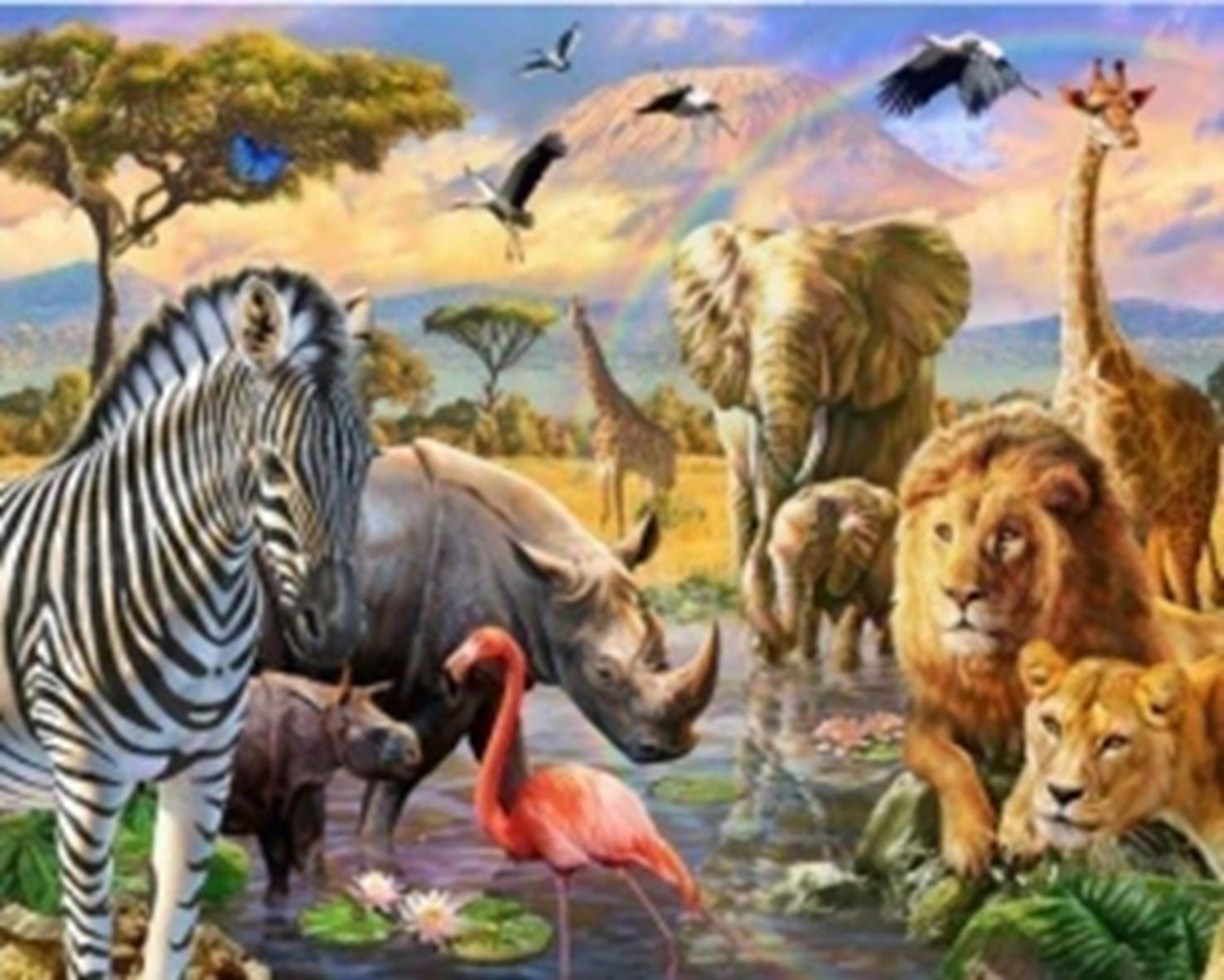 Картина раскраска по номерам 30x40 Звери Африки (арт ...