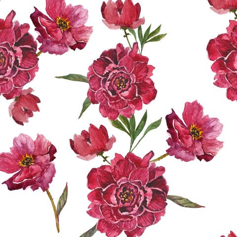 Акварельные красные цветы - анемоны и пионы