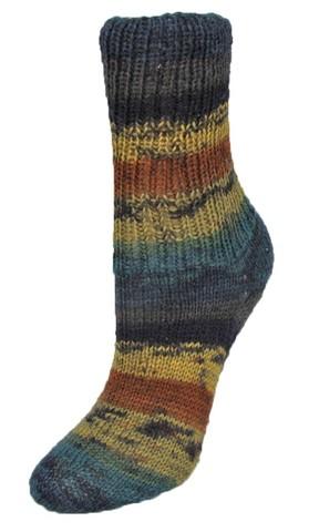 Пряжа для носков Rellana Flotte Socke Winterwald