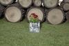 Вертикальная цветочница  Surreal Береза L (38х33 см) (Nature Innovation)