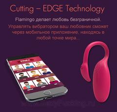 Вибратор для пары - FLAMINGO Magic Motion (с управлением через мобильное приложение)