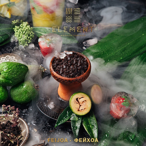 Табак Element Feijoa (Земля) 100 г