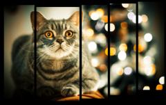 """Модульная картина """"Кот и Новый год"""""""