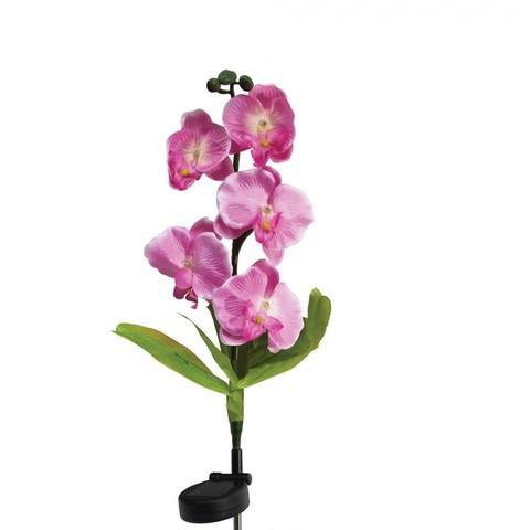 Светильник садово-парковый на солнечной батарее «Орхидея розовая», 5 LED белый, 70см , PL301 (Feron)
