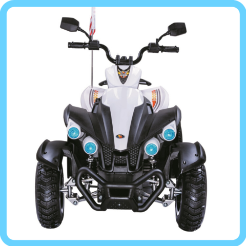 Квадроцикл P222PP