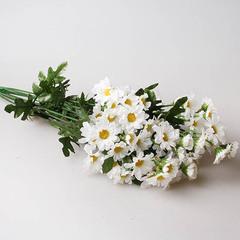 Хризантема кустовая белая, 91239