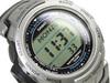 Купить Наручные часы Casio PRG-140T-7VDR по доступной цене