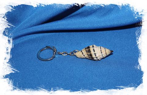 Брелок с морской ракушкой Вексиллум Пликариум