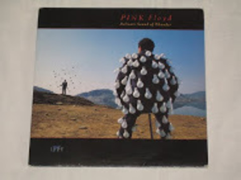 Pink Floyd / Delicate Sound Of Thunder (2LP)