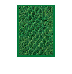 Legion Supplies - Протекторы Dragon Hide Green 50 штук