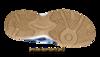 Asics Gel-Doha Кроссовки волейбольные - купить в интернет-магазине Five-sport.ru. Фото, Описание, Гарантия.