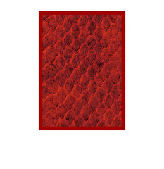 Legion Supplies - Протекторы Dragon Hide Red 50 штук