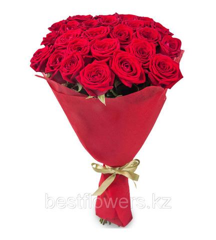Букет из 29 роз (Бордо)