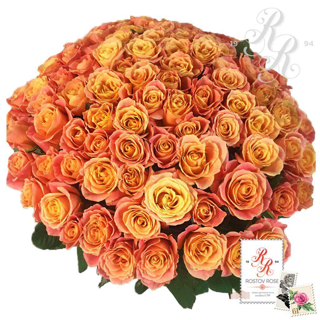 Букет 51 местная коралловая роза