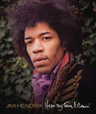 Jimi Hendrix / Hear My Train A Comin' (DVD)
