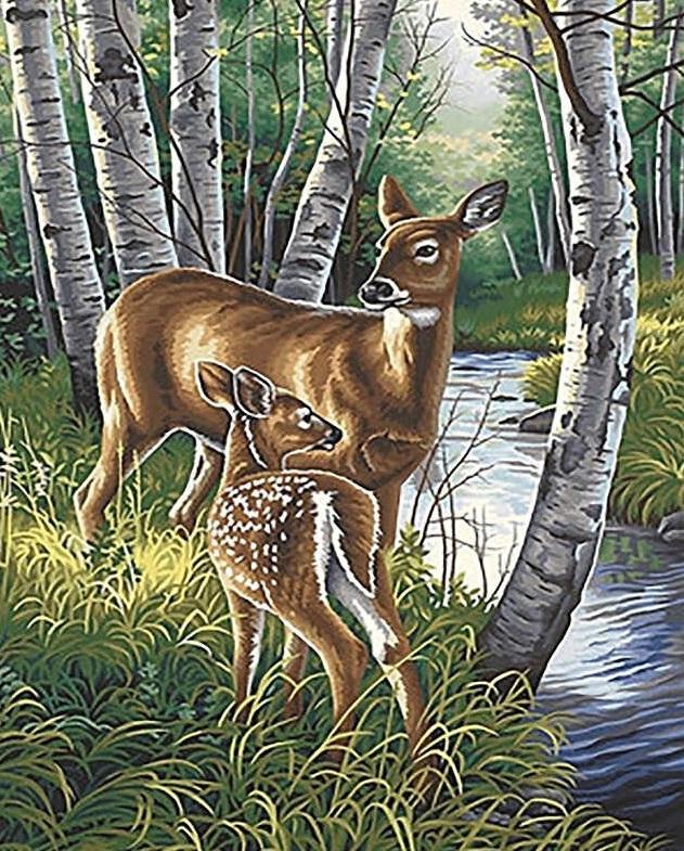 Картина раскраска по номерам 30x40 Олень с олененком ...