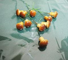 Грибы коричневые на проволоке 2 см, 10 шт.
