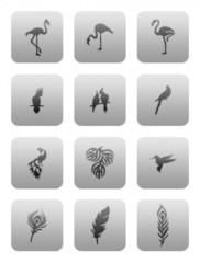 Трафарет для ногтей 9 шт. /1 уп. № CL25 (Exotic birds)
